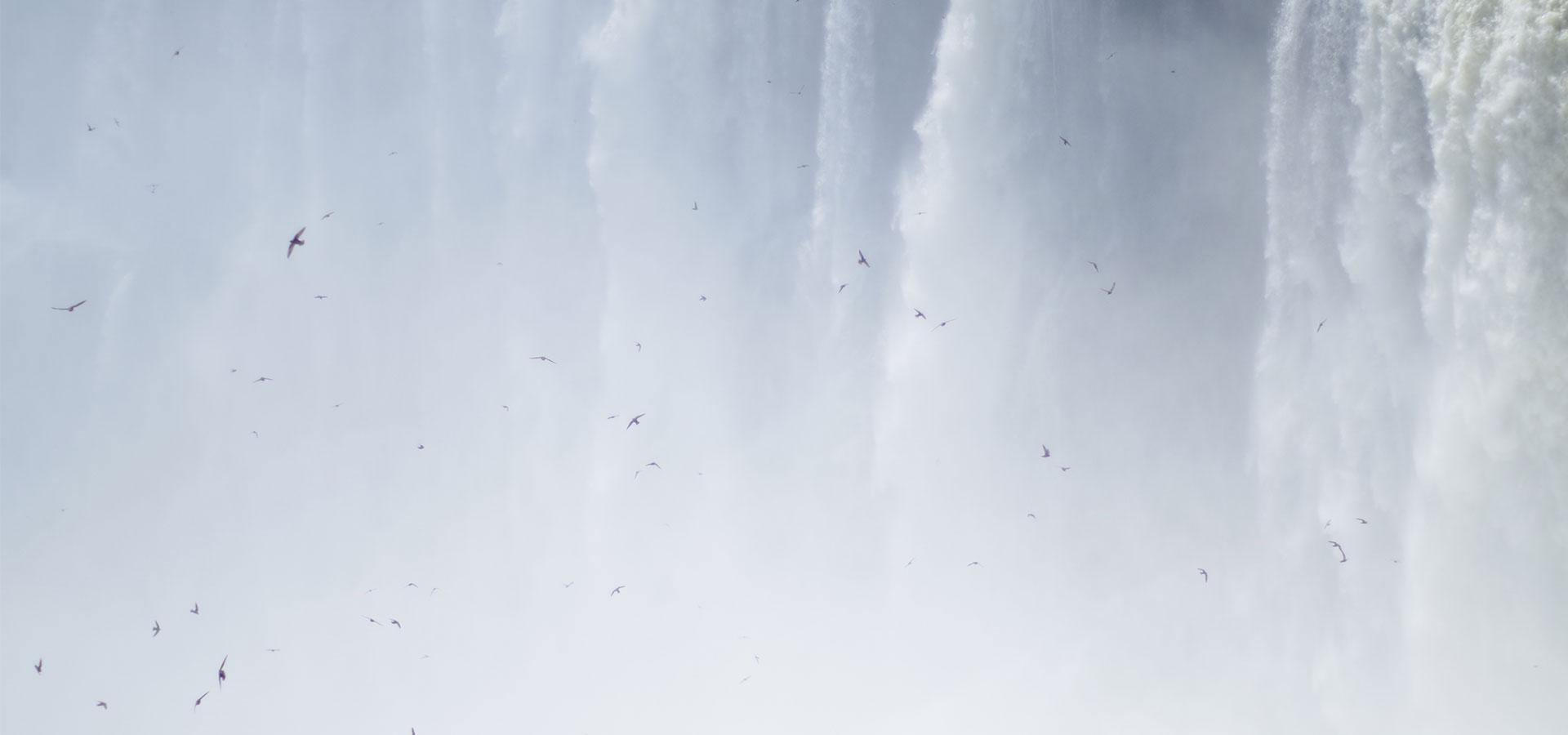 Argentinische Seite der Iguazu Wasserfälle Südamerika