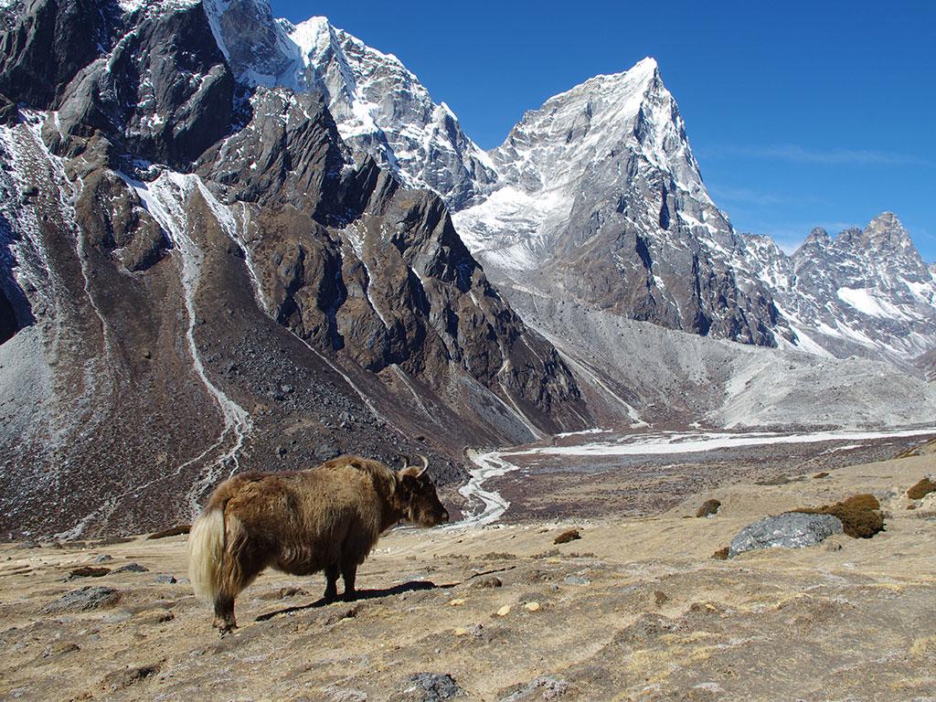 Landscape Landschaft Nepal